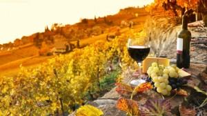 6988160-R3L8T8D-650-19-tuscan-wines