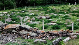 Անկարայում պղծվել է Սուրբ Փրկիչ և Քառասուն մանուկ եկեղեցիներին պատկանող հայկական գերեզմանատունը, մարդկային ոսկորները ցրիվ են տրվել