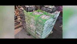 ԱԱԾ-ն բացահայտել է Սևանա լճից շուրջ 127 տոննա ձկների ապօրինի արդյունահանման՝ տարիներ շարունակ մշակված և գործող հանցավոր սխեմա